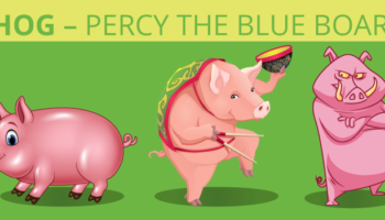 Hog – percy the blue boar