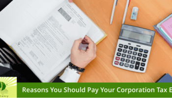 Why You Should Pay Your Corporation Tax Early?